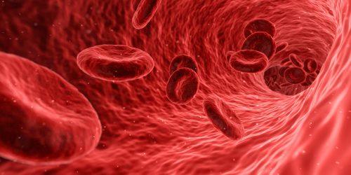 vaisseaux sanguins anévrisme