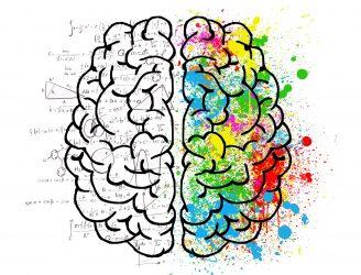 La Semaine du cerveau c'est du 13 au 19 mars 2017.