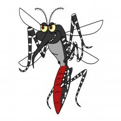 La dengue, transmise par un moustique