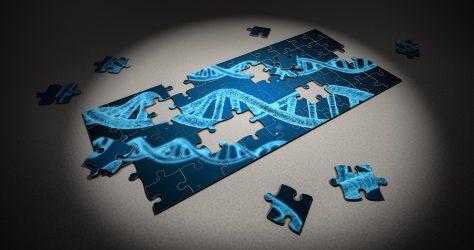 Les stratégies thérapeutiques visent à réparer l'ADN